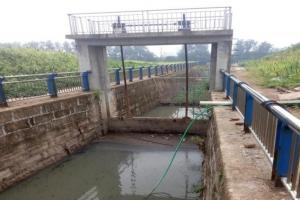 义乌东前王排污渠生态净化处理