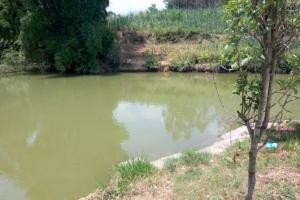 广西安马乡河道水质处理