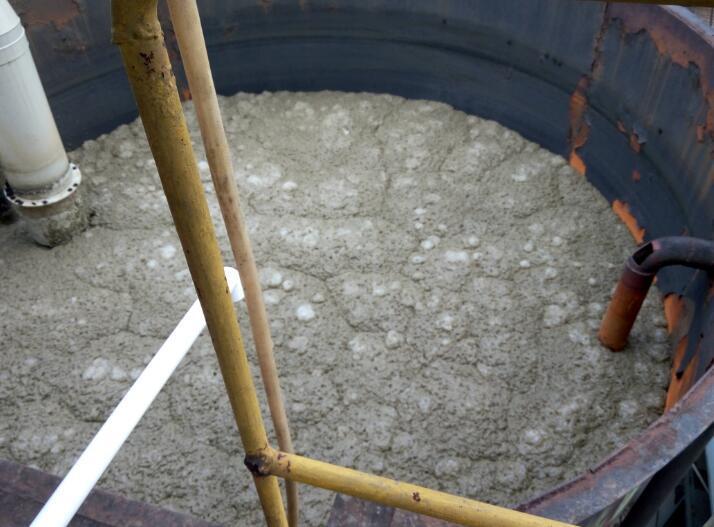 处理前好氧池污泥膨胀