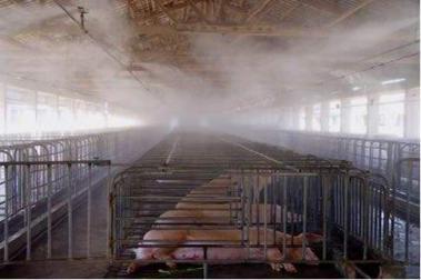 洛阳鑫达养殖场生物除臭_养殖厂生物除臭剂