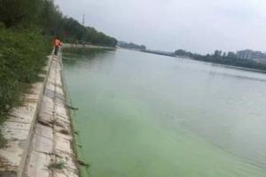 菏泽市郓城县河道富营养化治理